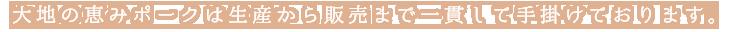 阿蘇くまもと大地の恵みポークは生産から販売まで一貫して手掛けております。